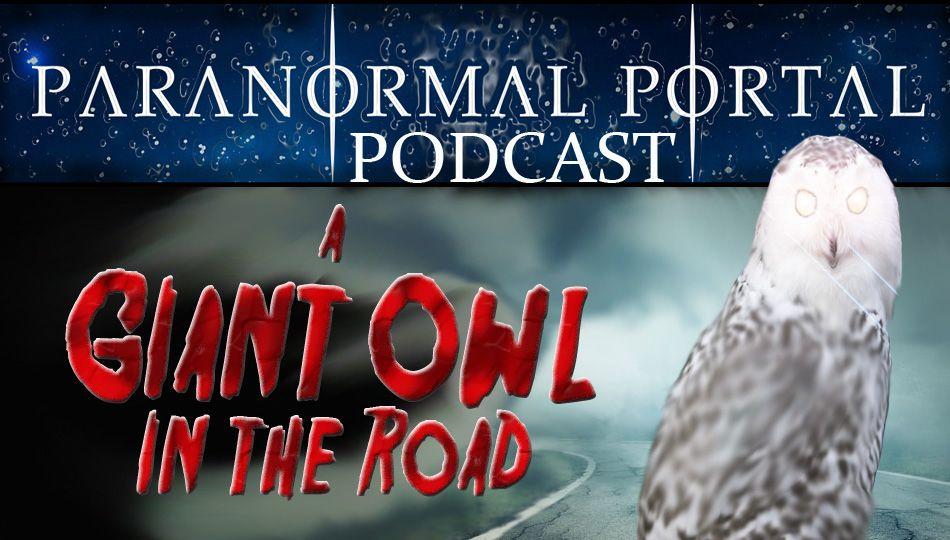 158 - A Giant Owl in the Road
