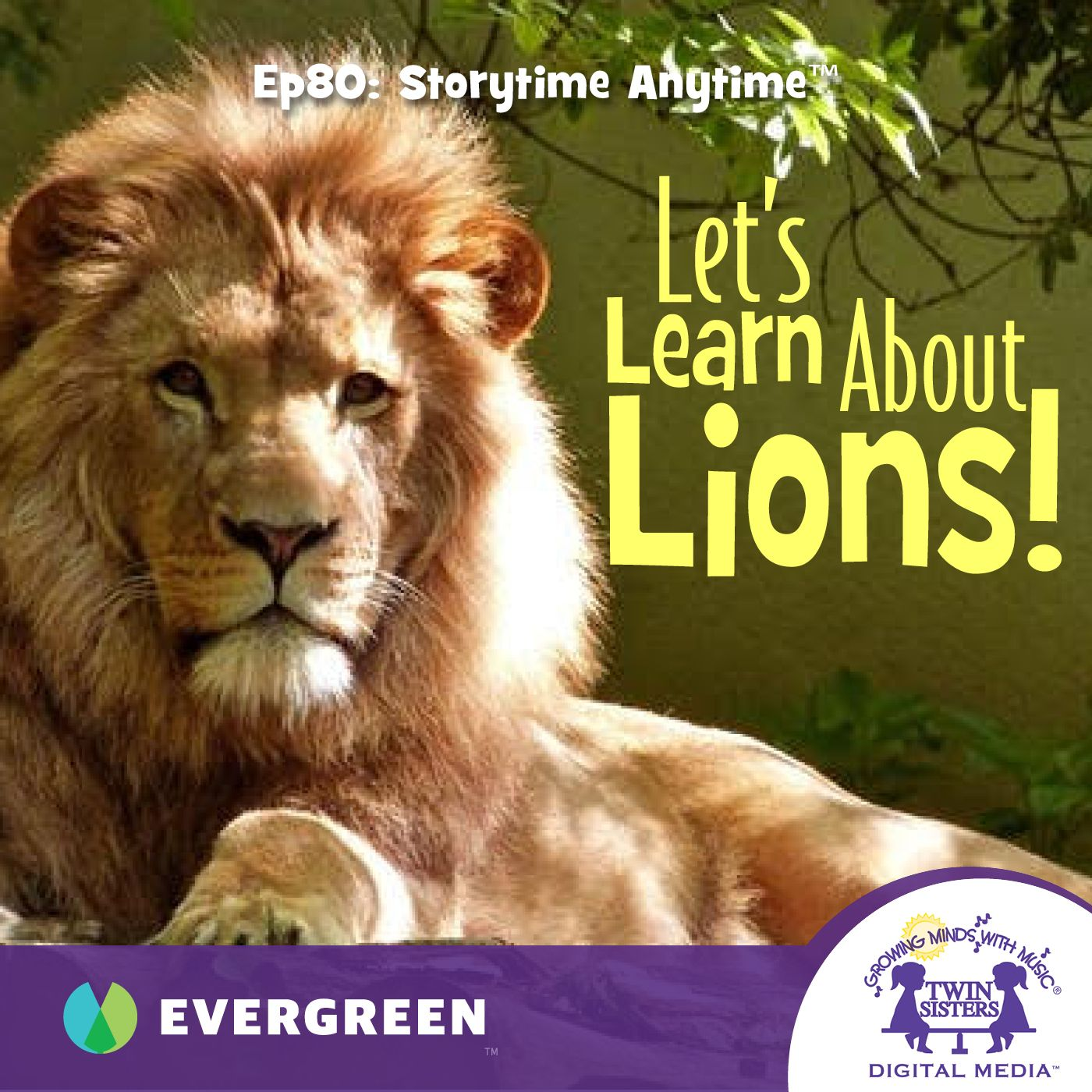 Let's Learn About Lions!