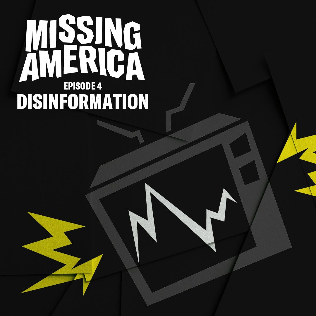4. Disinformation